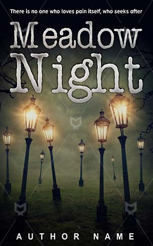 Thrillers-book-cover-Meadow-Dark-Symbol-Night-town-Forest-Darkness-Wood-Magic-Lantern-The-dark-city-Hope